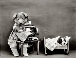 Naptime for Nipper: 1914
