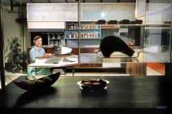 Miracle Kitchen: 1959