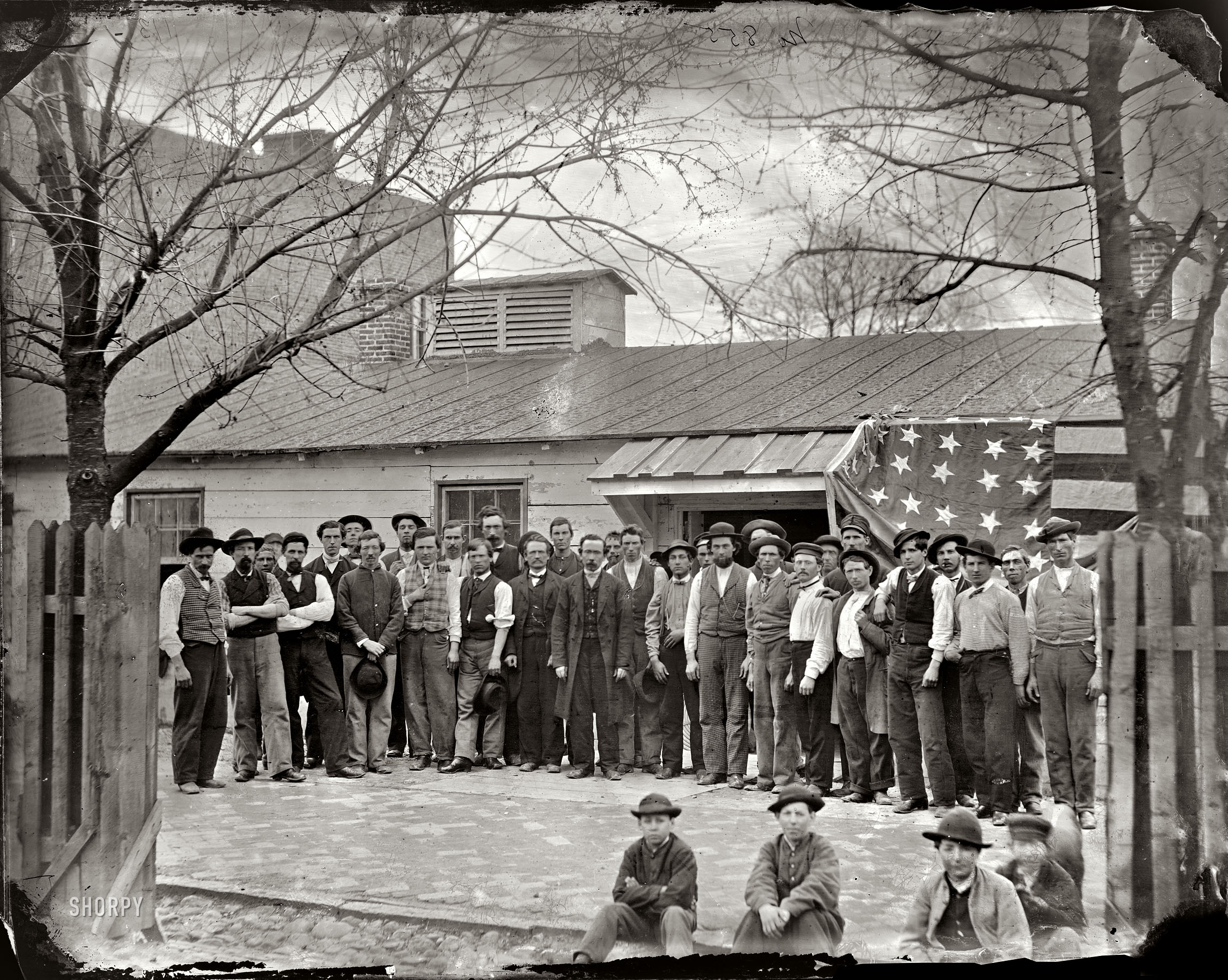 Shorpy Historic Picture Archive :: Quartermaster Corps ...