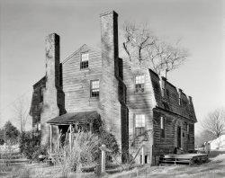 Cat House: 1935