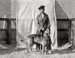 Kennel Club: 1916