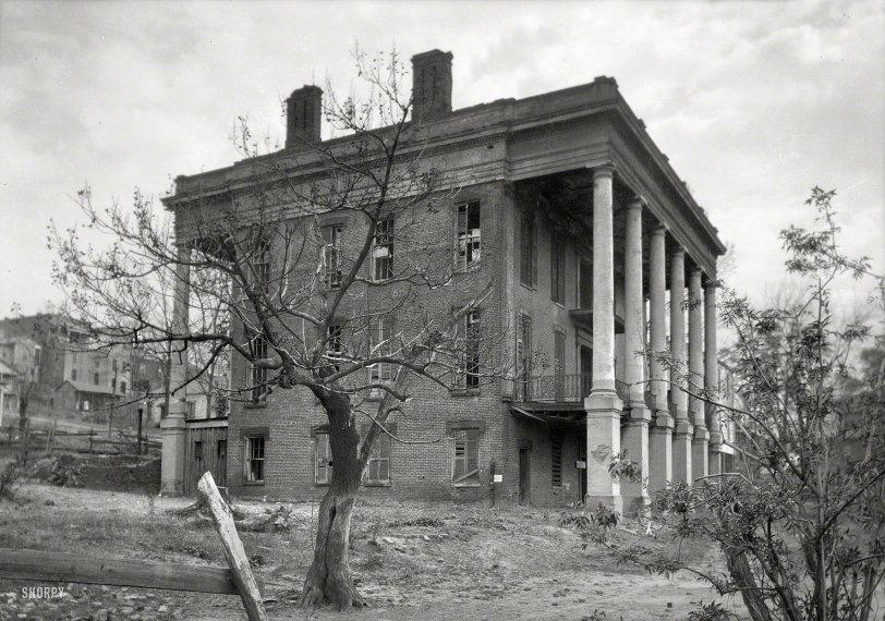 Shamrock: 1934