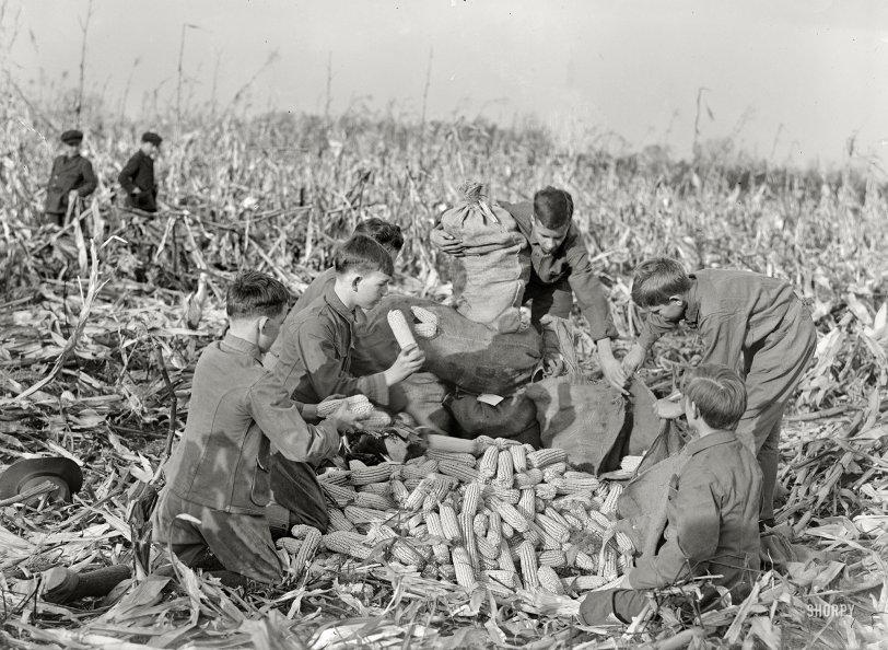 Children of the Corn: 1917