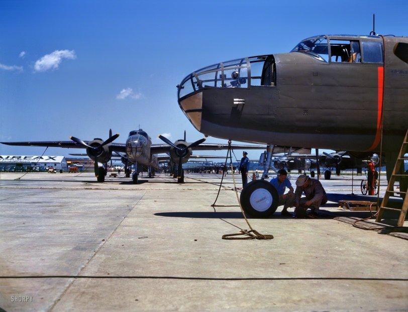 Hatchlings: 1942