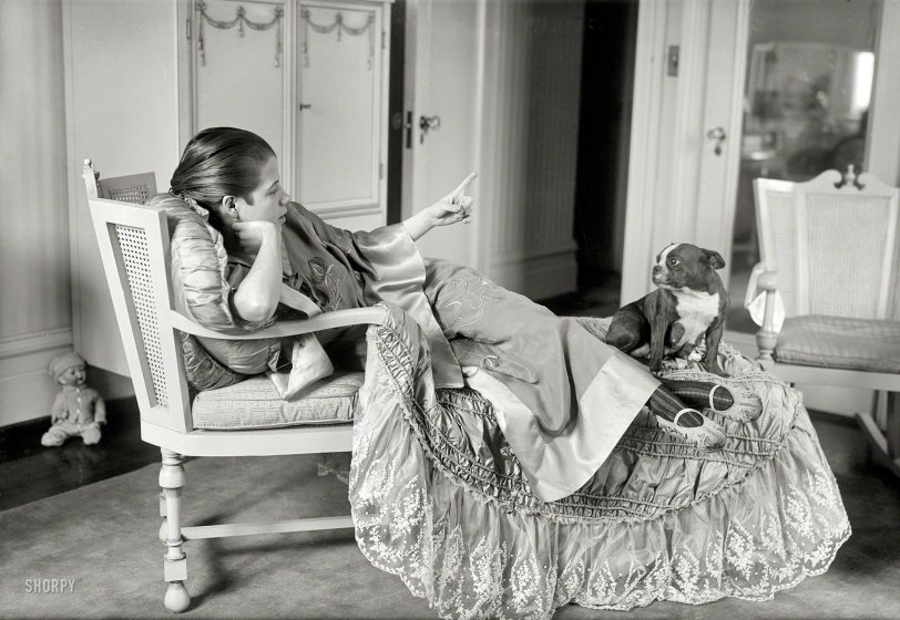 The Diva and the Dog: 1917
