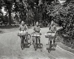 The Three Basketeers: 1924