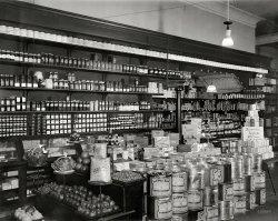Burchell's: 1921