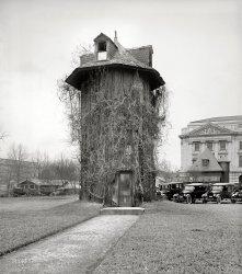 Tree House: 1923