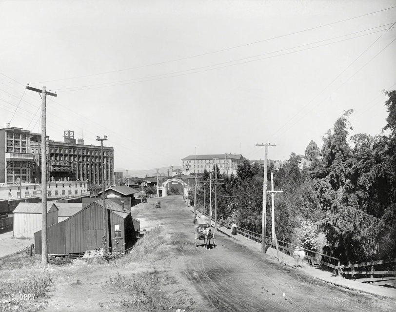 The Sugar Factory: 1915