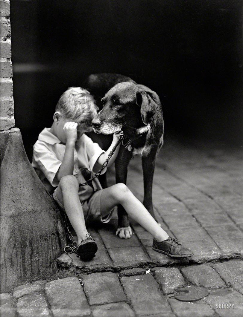 The Boy Who Cried, Dog