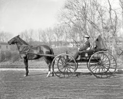 Personal Transportation: 1921