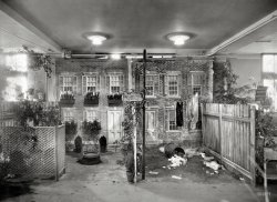 Tenement Beautiful: 1921