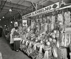 Vegetable Kingdom: 1924