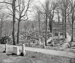 Oak Hill: 1919