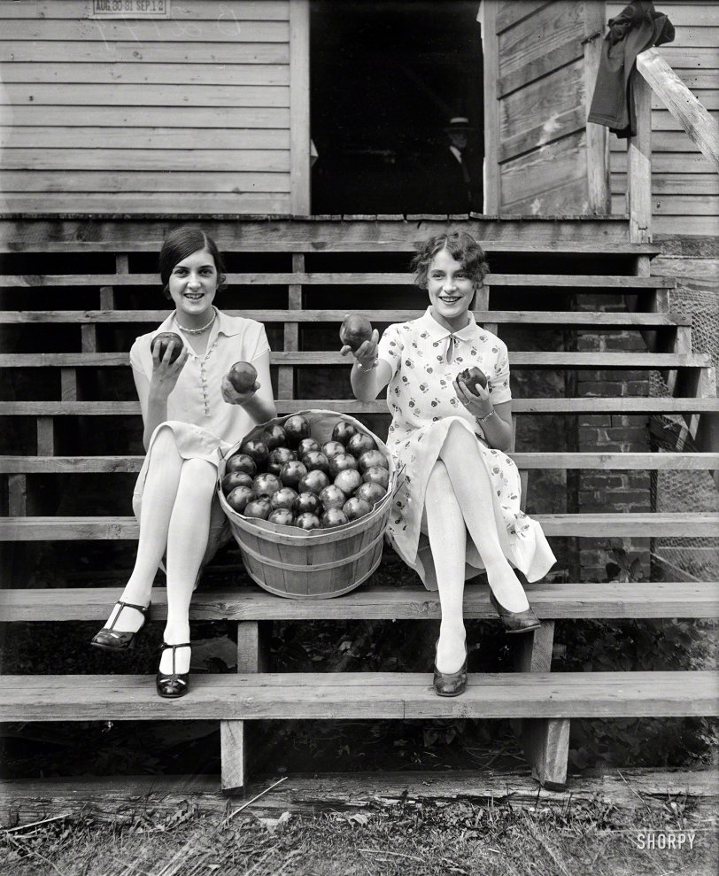 Apple Saucy: 1927