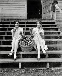 Apple Saucy: 1927