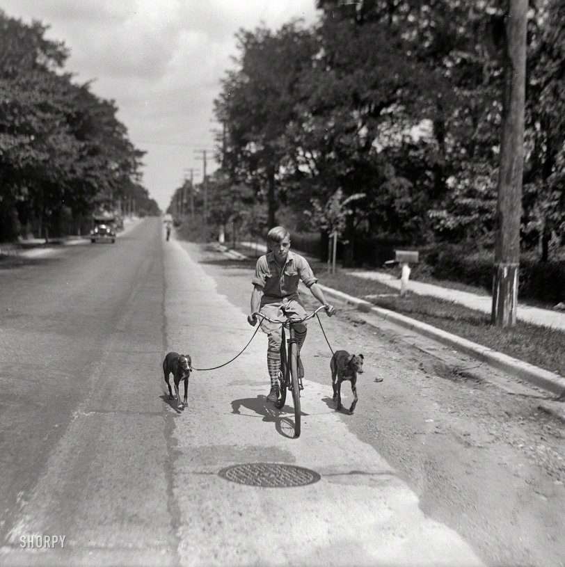 A Boy and His Dogs: 1928