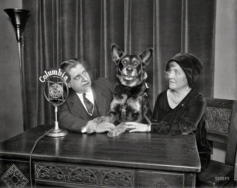 The Dog Show: 1930