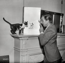 Cat and Mouse: 1931
