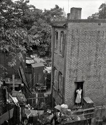 D.C. Tenement: 1935