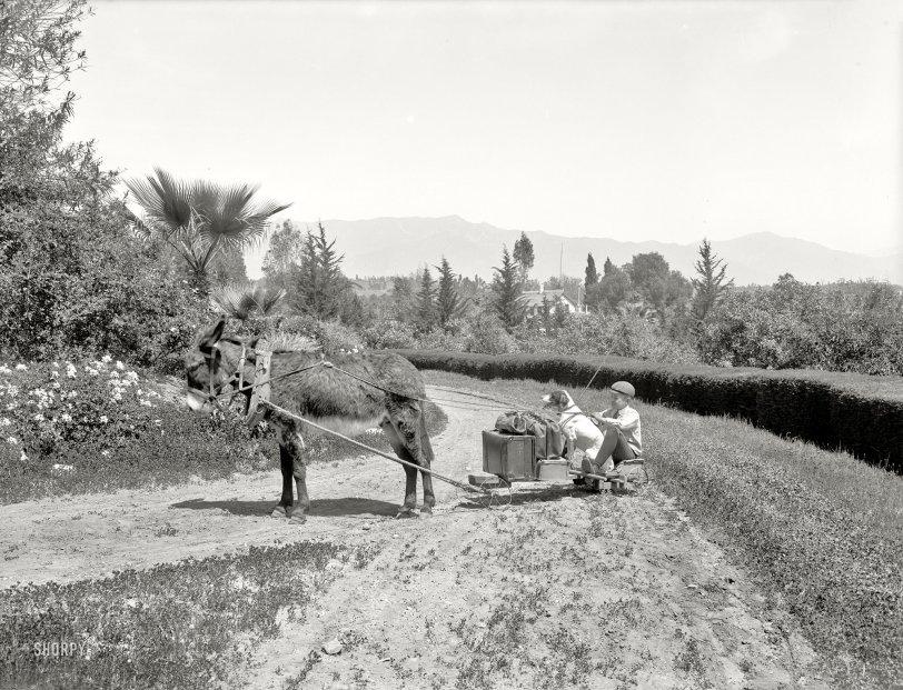 Eeyore Express: 1904