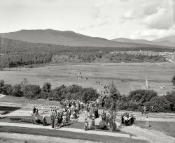 On the Links: 1901
