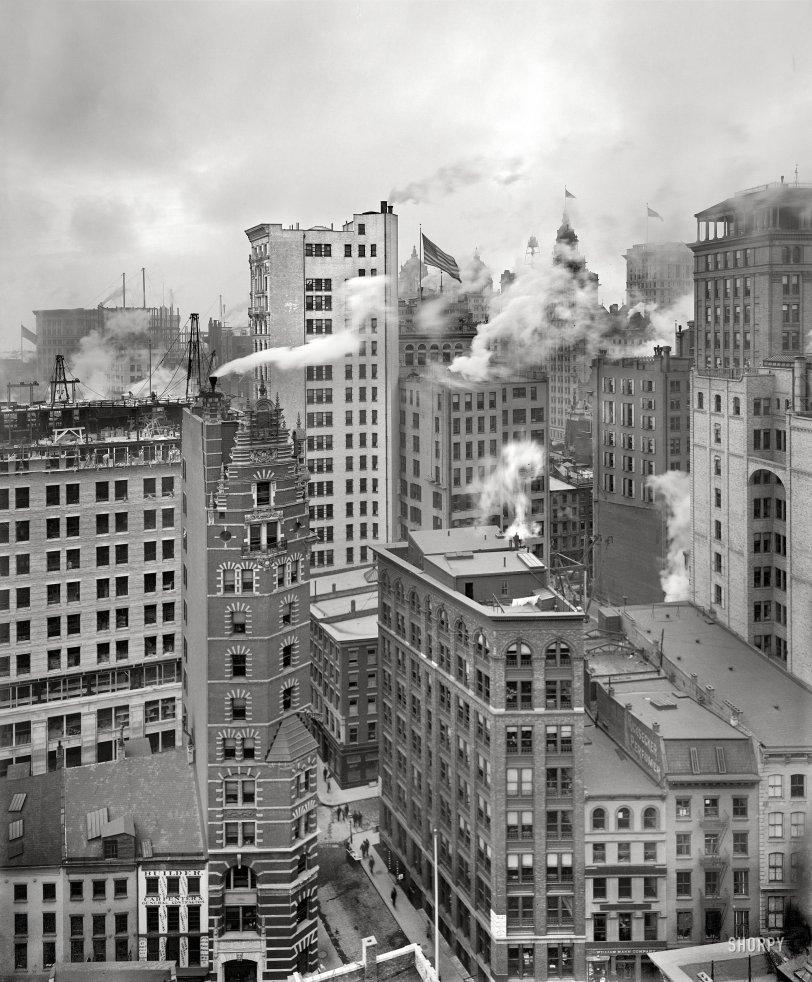 New York, New York: 1901