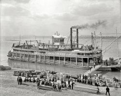 Louisville Levee: 1905