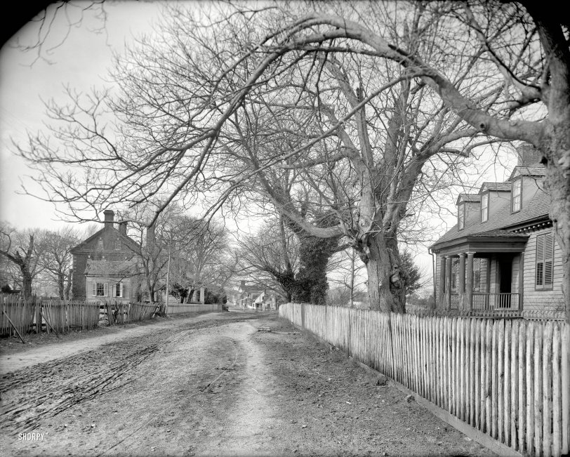 Picket Fences: 1903
