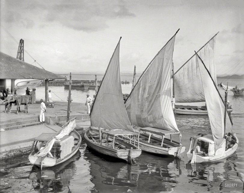 San Juan Sailboats: 1906