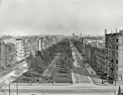 Commonwealth Avenue: 1904