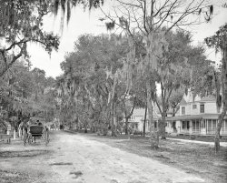 Ridgewood Avenue: 1904