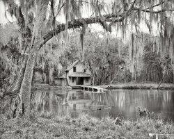 De Leon Springs: 1904