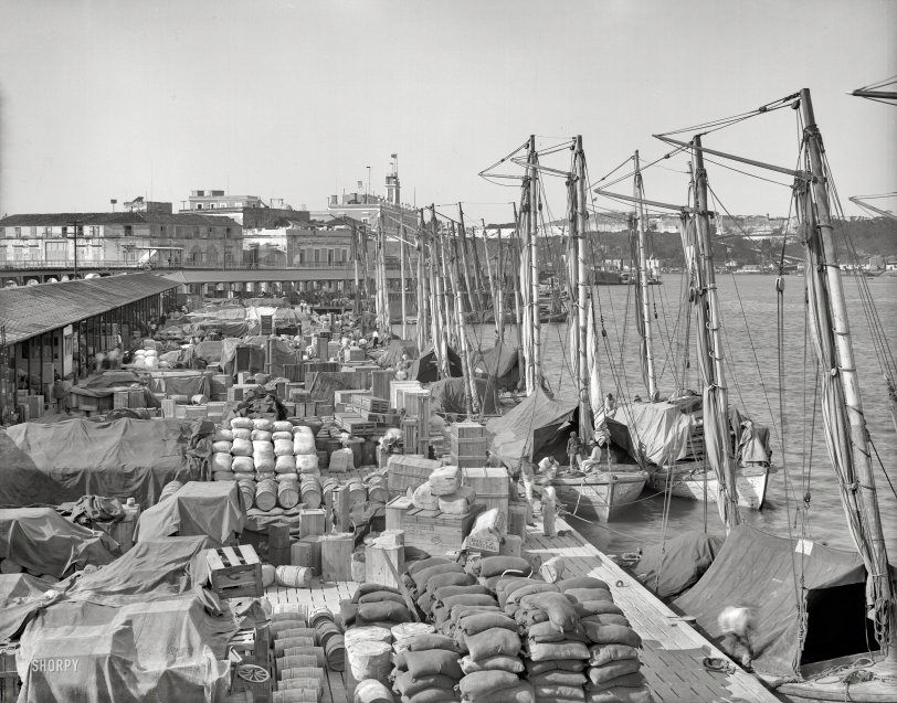 Cuban Cargo: 1904