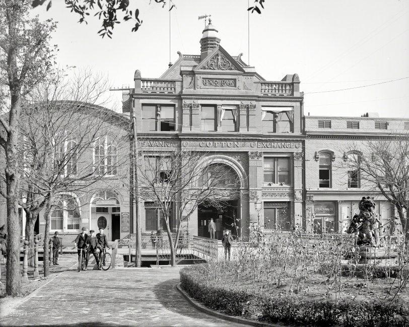 Cotton Exchange: 1904