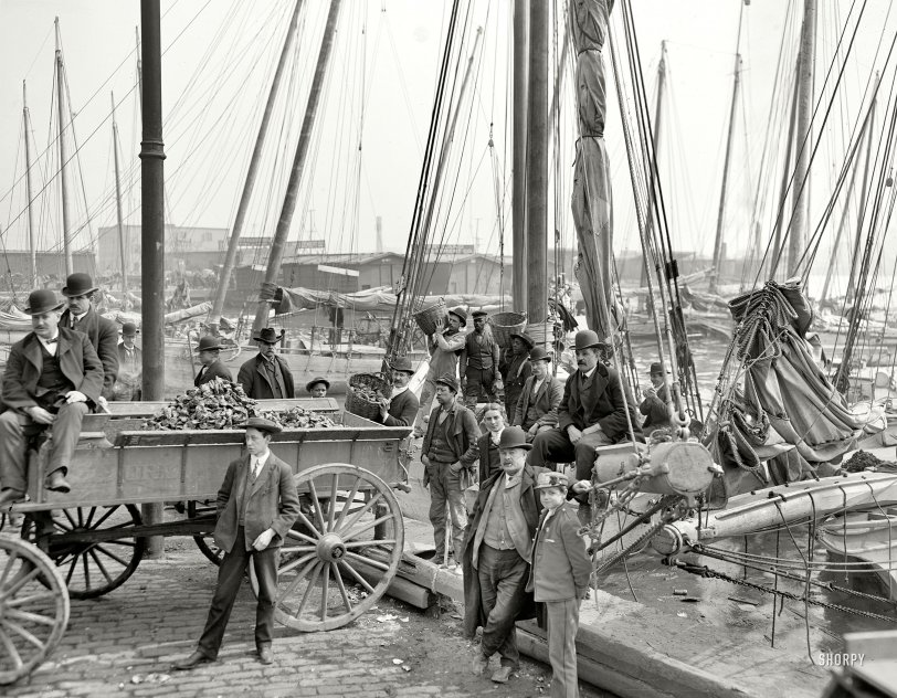 The Oyster Wagon: 1905