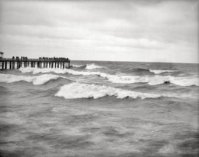 Ocean Spray: 1905