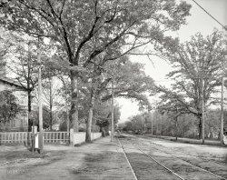 Walton Way: 1905