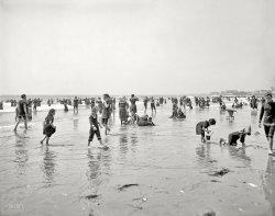 So Many Summers Ago: 1905