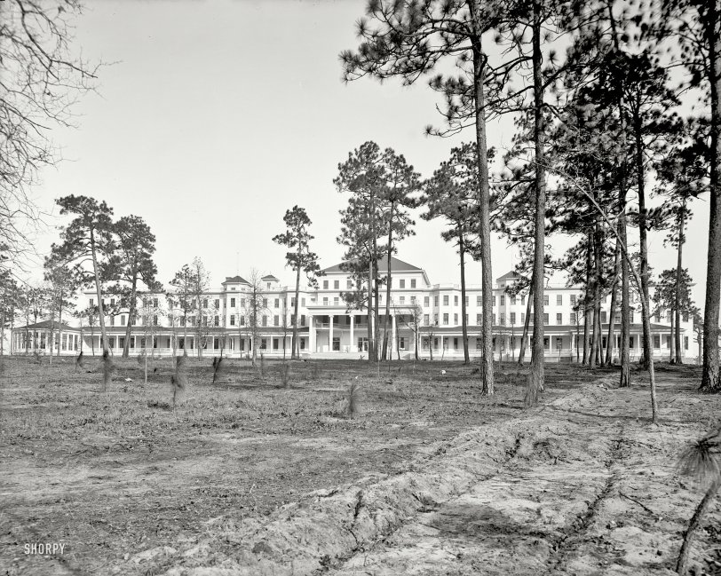 Park in the Pines: 1905