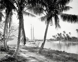Miami River: 1904