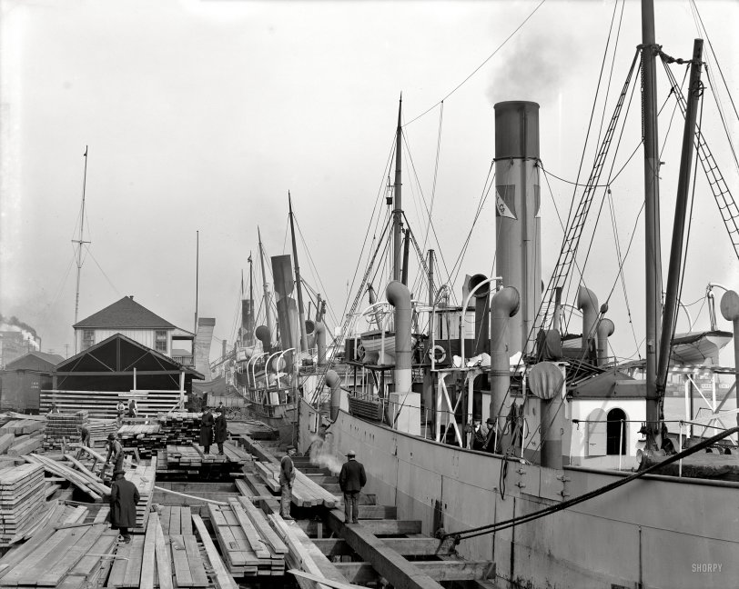 Along the Docks: 1906