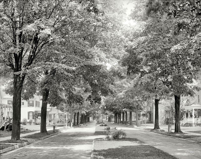 Arnold Park: 1905