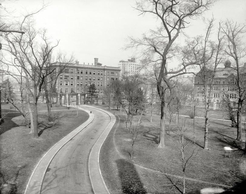 C.U.: 1910