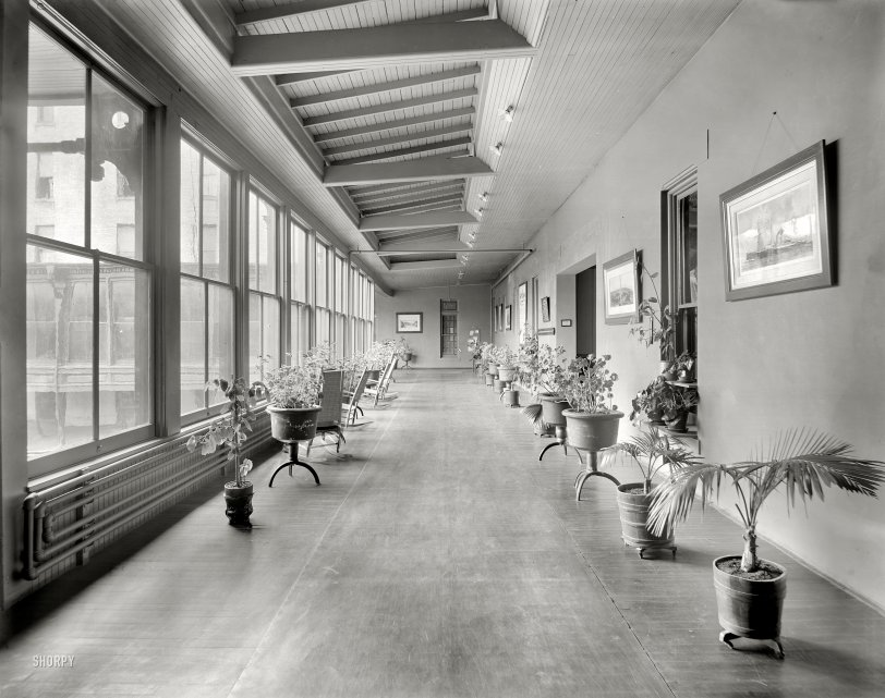 Flowerpot Pavilion: 1905