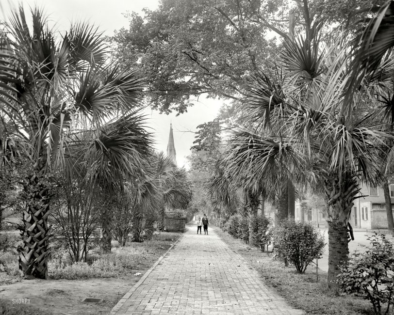 Vanishing Point: 1907