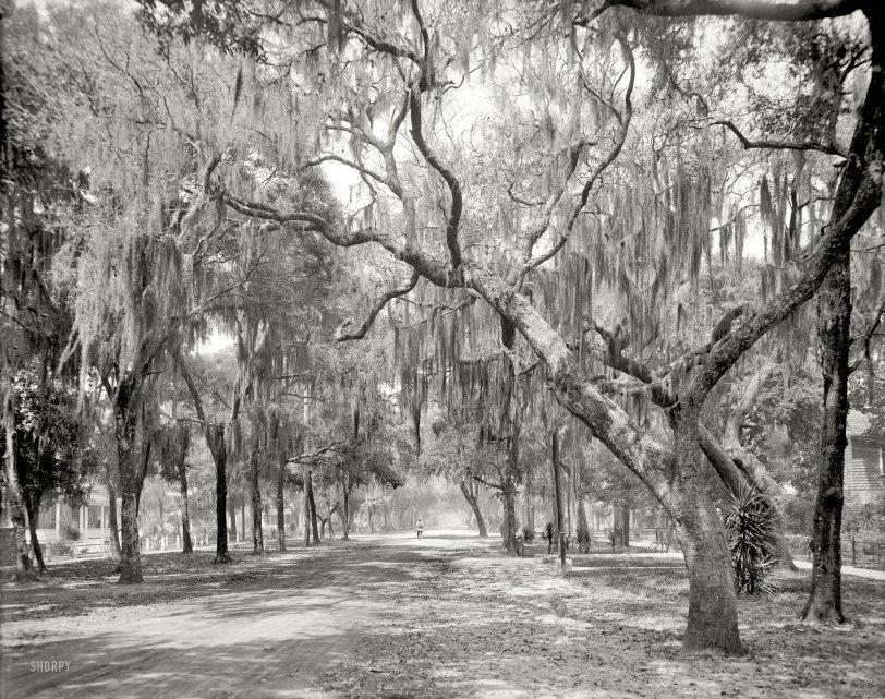 Daytona Beach: 1910