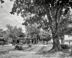 Monroe Park: 1910