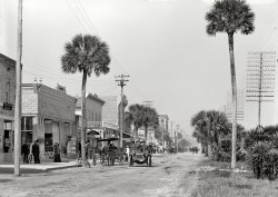 Speed Week: 1906