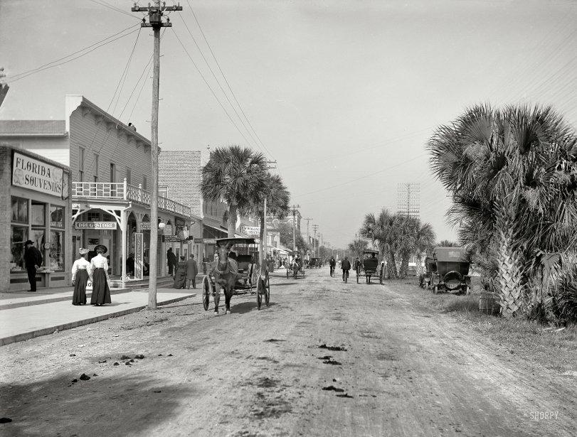 Florida Souvenirs: 1906